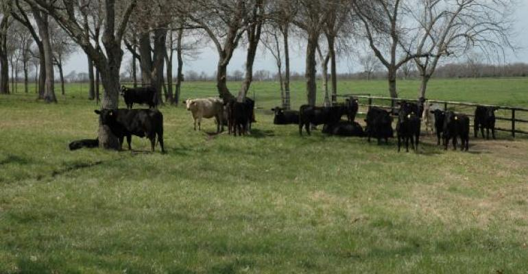 Evaluation of pasture health