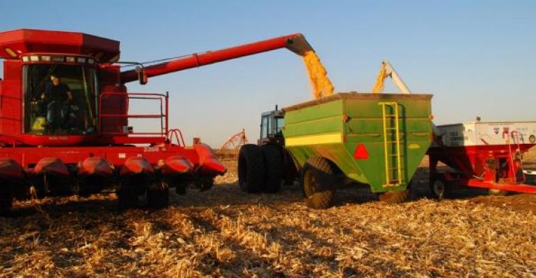 Corn Harvest Winding Down; Yields Better Than Expected