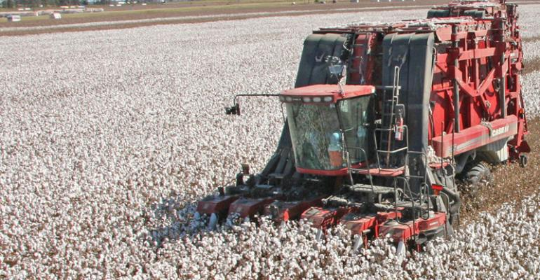 Weather and China will be key influences on cotton's future