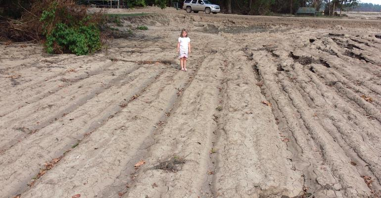ANDERSON FLOWERS daughter of Coahoma County Miss cotton producer Bowen Flowers stands in an old cotton field from the 1920s The field was uncovered by this springrsquos floodwaters