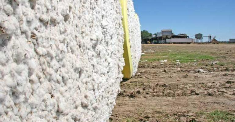USDA sees 15.83 million bale U.S. cotton crop