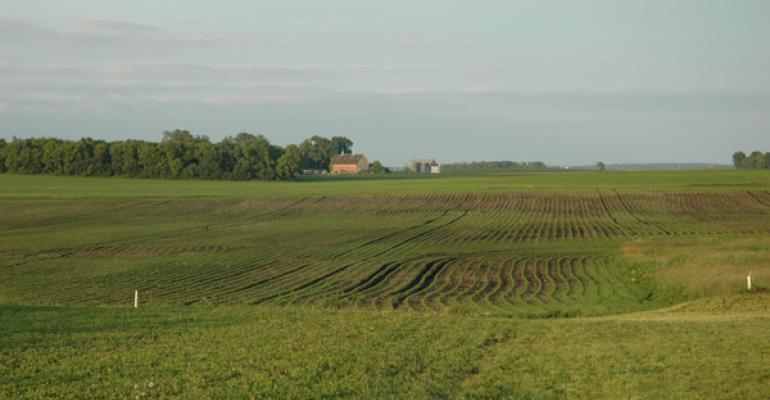 New RMA Rule Gives Flexibility in Cover Crop Termination