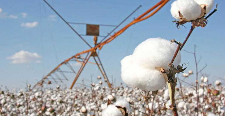 US drought and Chinese reserves key for cotton market