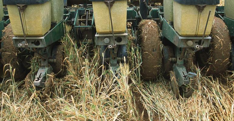 Spring Seed Cover Crops to Help Recover Flooded Fields