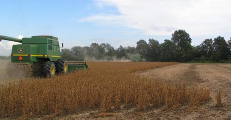 Soybean markets step back