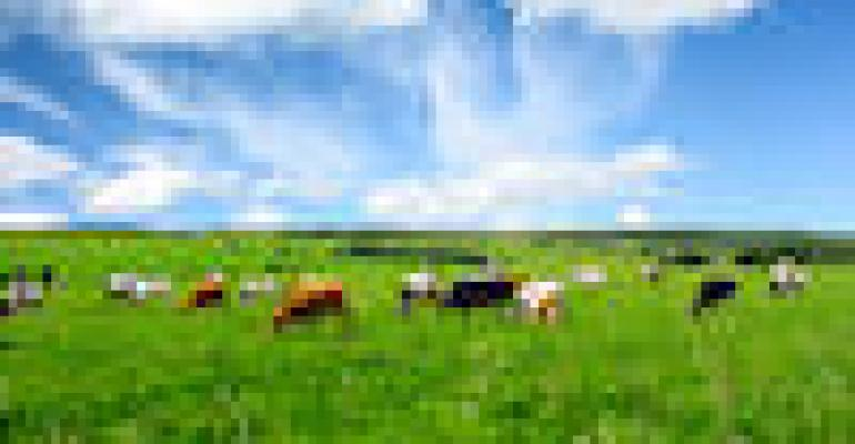 Manage Pastures To Boost Forage Supplies