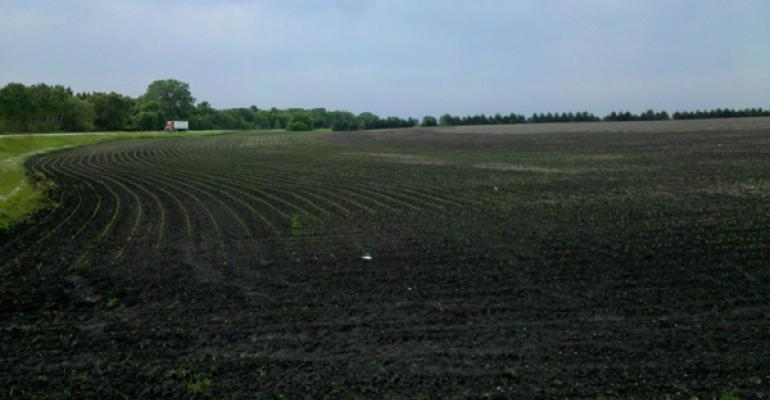 Farmers Planting Corn, Soybeans Early Face Significant Risk Despite Record Warm Weather