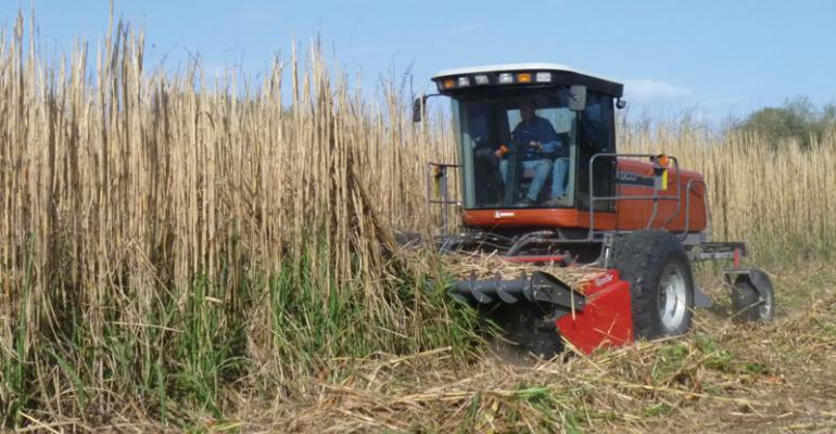 Growth of biomass industry dependent on government policy