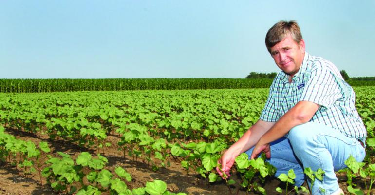 GROWING COTTON is a new experience for Jay Hoover longtime grains and poultry producer at Macon Miss Area producers are diversifying into or expanding cotton acres as they increase irrigation capability
