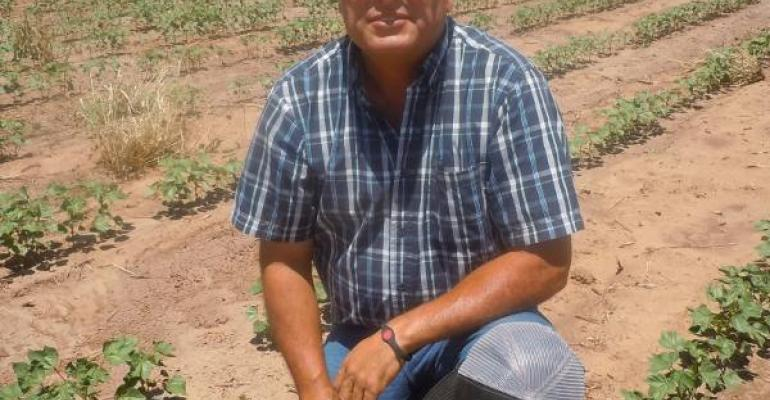 DROUGHT puts pressure on water and farmers Roby Texas cotton producer Richard Gaona checks progress of the 2012 crop