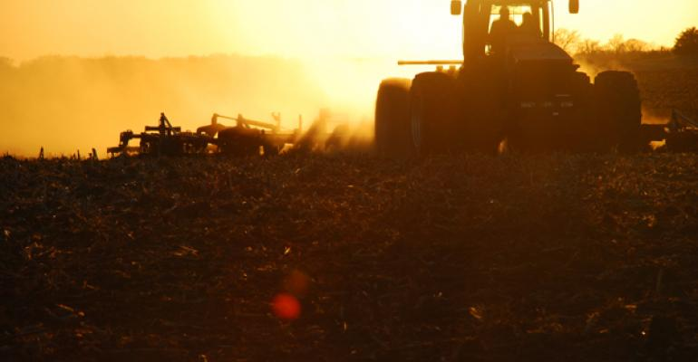 Resistant Weeds Drive Tillage | A Rebound in Tilled Corn Acres May Spread