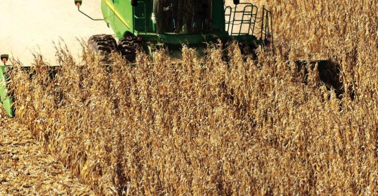 Tips for harvesting drought-damaged corn this fall