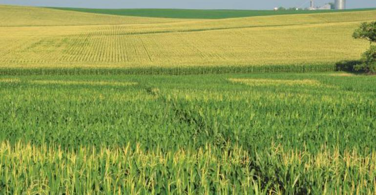 Crop insurance and the harvest price option