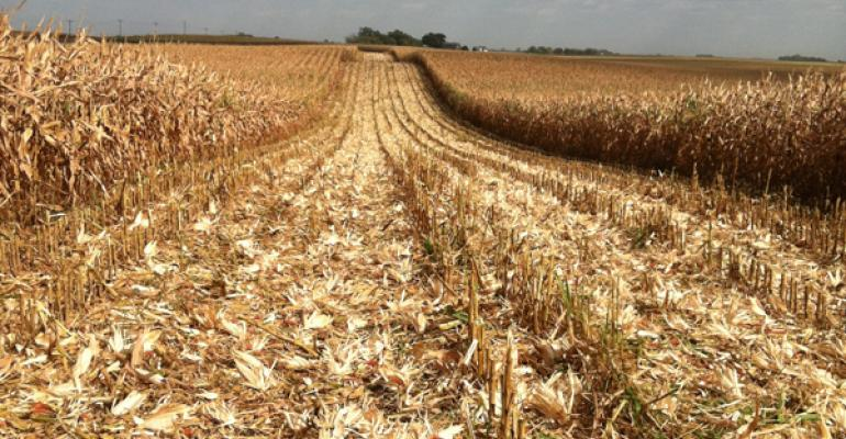 4 considerations for herbicide application in the fall