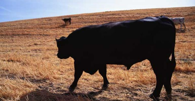 Livestock producers have risk management options