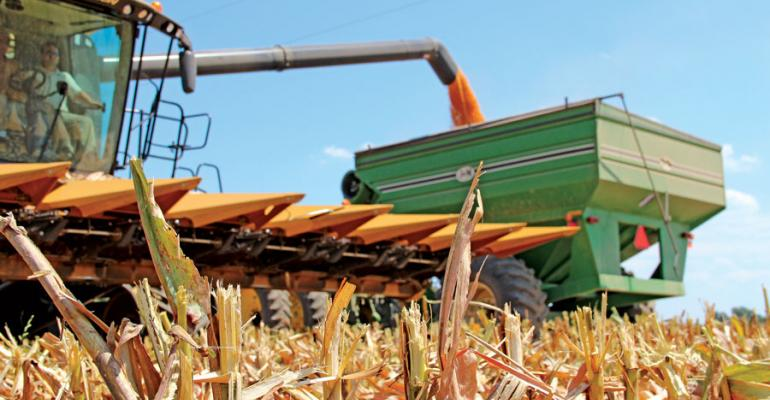 Manage harvest, storage to boost corn profit potential