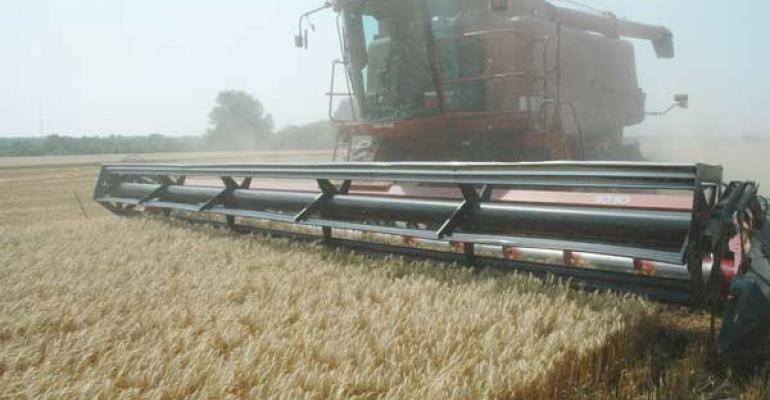 Nearly 1.0 billion extra bushels of wheat