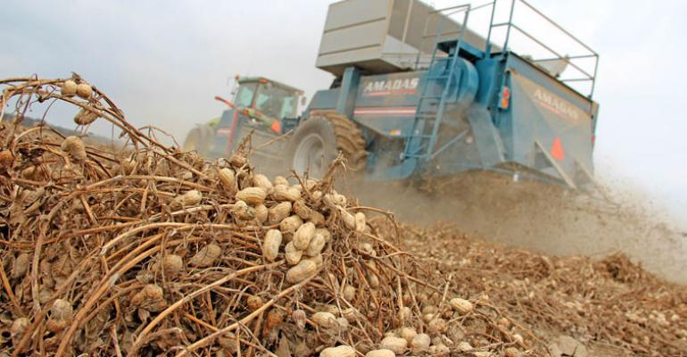 Top 10 DFP stories of 2012: Peanuts, cotton gins and farming dreams