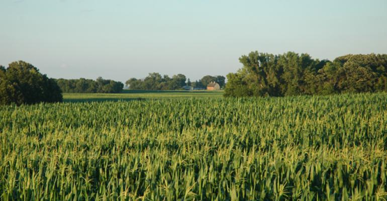 Crop conditions remain steady