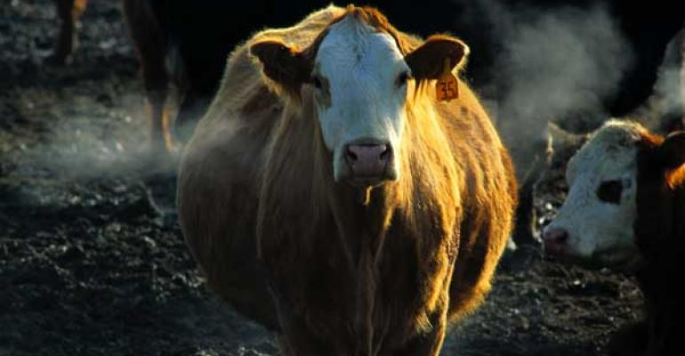 Beef industry, consumers to be affected by cattle production decreases in 2013