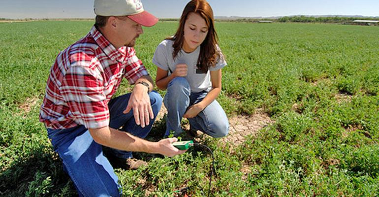 Land and capital stumbling blocks for young farmers
