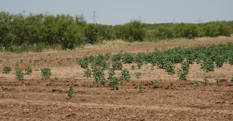 Drought conditions across Texas and much of the Southwest persist into a third year