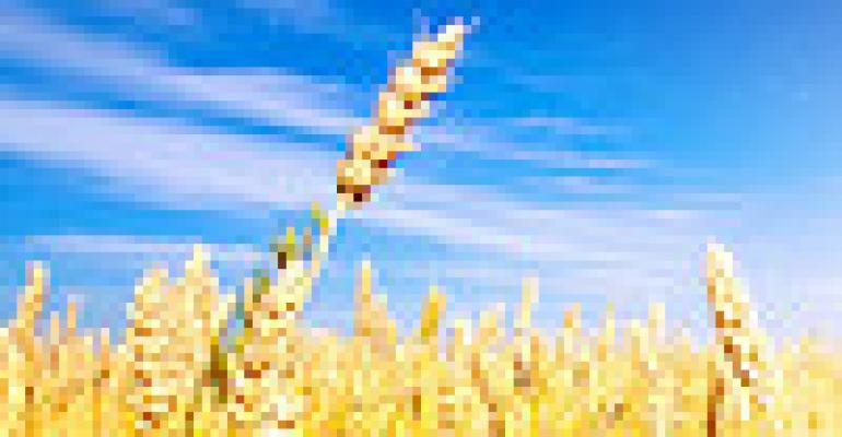 Economic Concerns Cap Grains