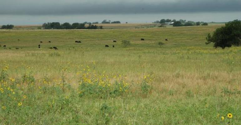 Drought may represent the most stress to rangelands