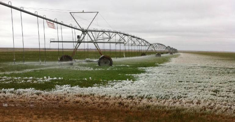 Though ice loads during freezing weather can damage irrigation pivots many producers will keep them running until it drops well below freezing said Rick Auckerman Texas AampM AgriLife Extension Service agent for Deaf Smith County The temperature was 32 degrees with 20 25 mph northerly wind when this picture was taken
