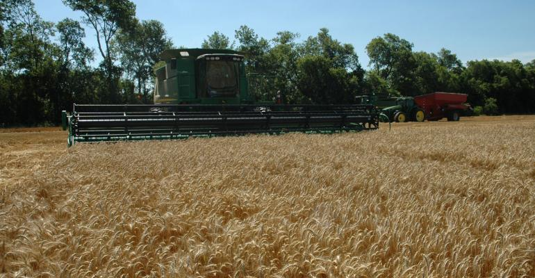 A 35 cent above average wheat basis