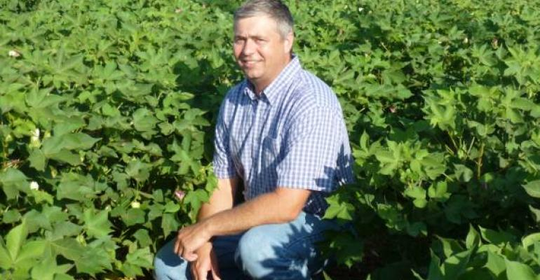 STEVE HAGUE Texas AampM AgriLife Research cotton breeder at College Station is shown in one of his test plots