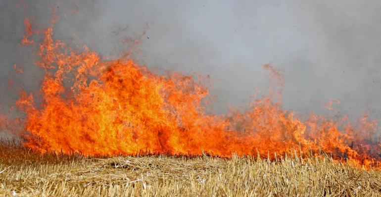 Farmer risks life to stop fire