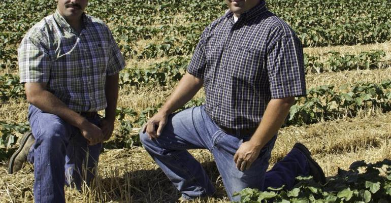 Farmers with Lucero Farms in Fresno County Calif Jonathan Guido left and Danny Ramos spoke at a notill cotton field day event about their involvement with the conservation tillage practice