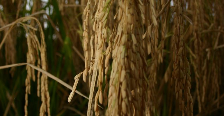 U.S. rice quality and quantifying customer demands