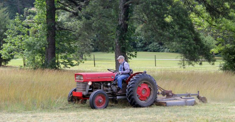mowing herbicides pasture weed control