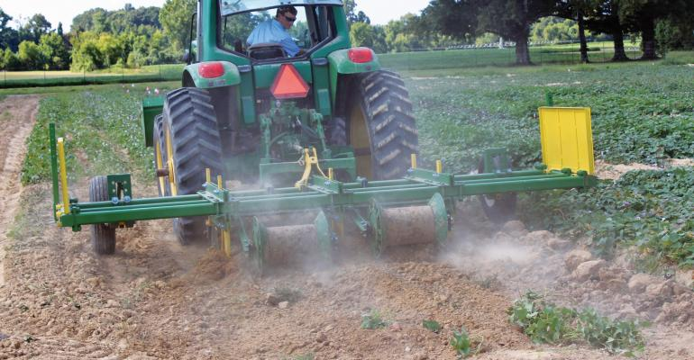 AN UNDERCUTTER implement to improve sweet potato harvest and skin strength is being tested by Mississippi State University researchers