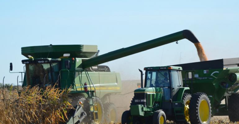 Should you choose highest corn yield or consistent corn yield?