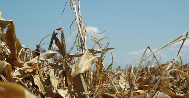 Spread corn residue now for easier spring planting