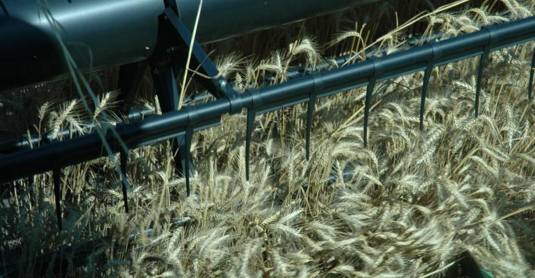 Wheat prices: 72 up and 72 down