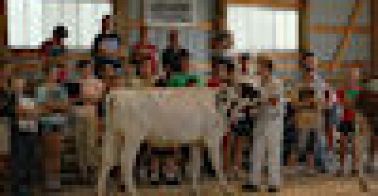 Wisconsin 4-H Dairy Youth Win National Awards
