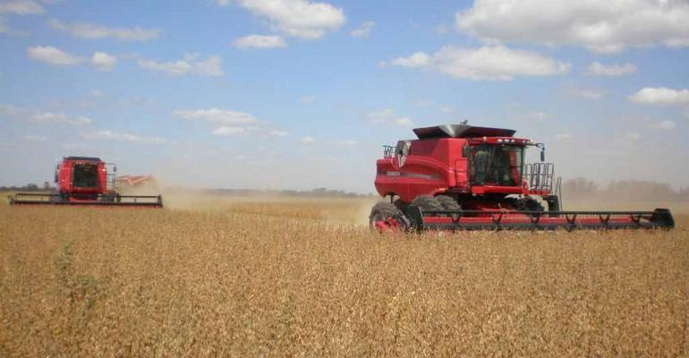 Soybeans: Two worlds divided