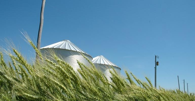 As  wheat conditions change markets may rise or fall for the may  2014 crop