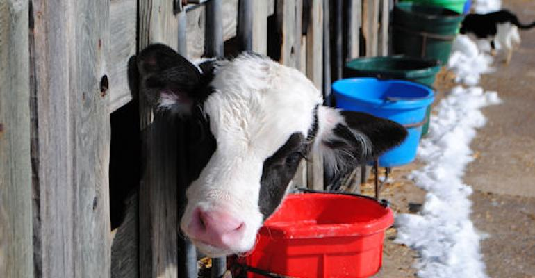 Dairy Provision in New Farm Bill May Prove Costly