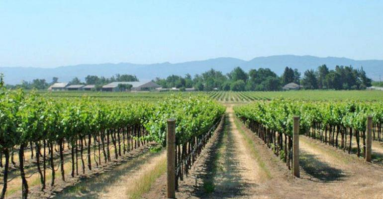 Grape growers turn attention to wind machines