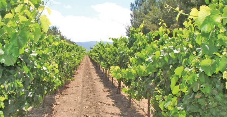 California agriculture set for another good year in 2012