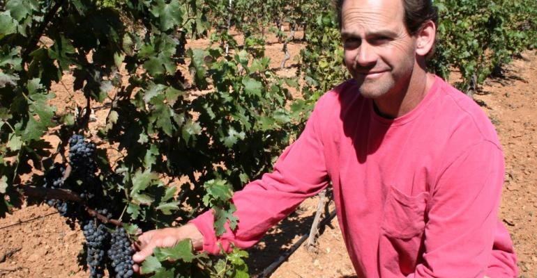 Arizona grape-wine industries spur growth, respect