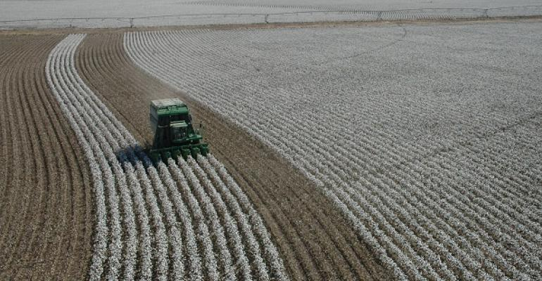 Cotton harvest could depend on an El Nintildeo coming in this summer