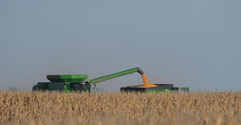 4 ways corn performance is impacted by harvest delay