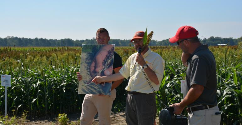 DURING A SORGHUM FIELD day held at Upper Coastal Plain Research Stationrsquos Fountain Farm in Rocky Mount Dr Randy Weisz North Carolina Extension small grains specialist points out the damage of a peduncle caused by the fungal disease anthracnose The photo being held by Brandon Poole small grains research specialist shows an infected peduncle that has been sliced open sot you can see the red anthracnose infection inside it Holding the speaker is Beaufort County Extension Agent Rod Gurganus