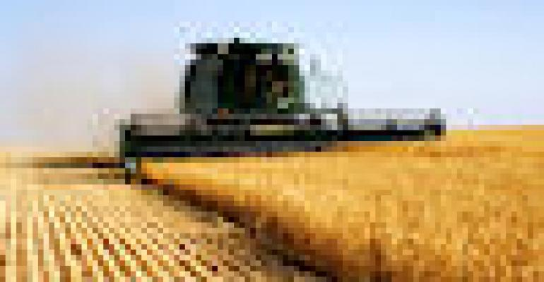 Wheat Market Jumps To Lead Market Higher